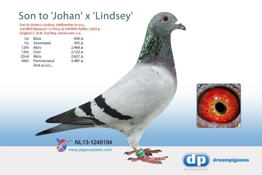 NL13-1248194