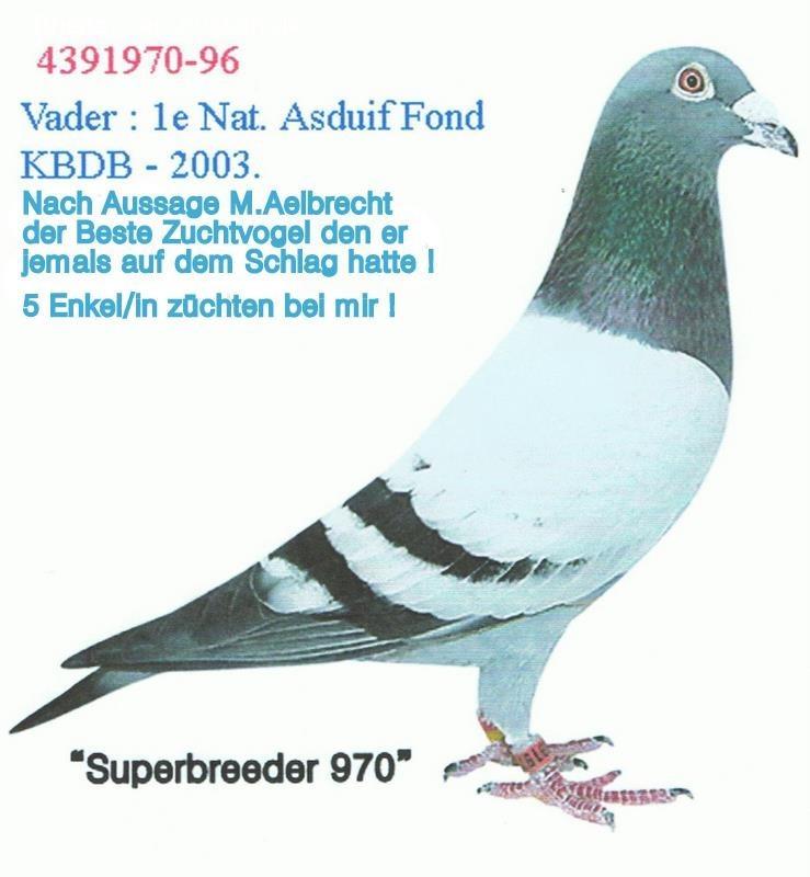 kop 20 Smallen 970-96