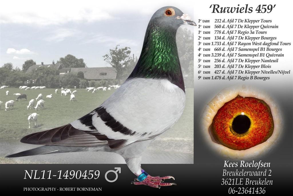 kop 7 NL11-1490459